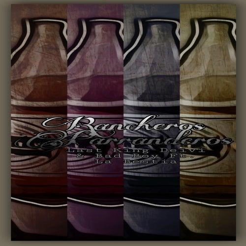 Rancheros Parranderos by Last King Deivi