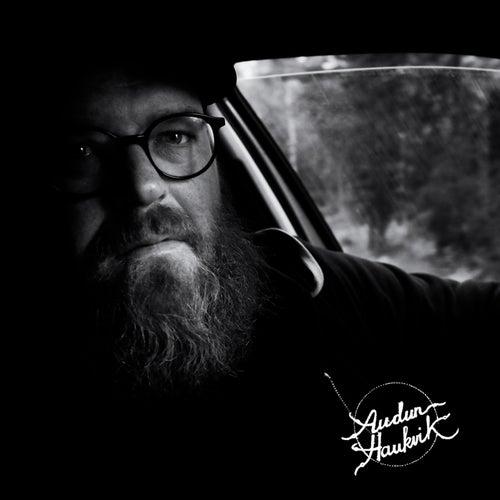 Driving Alone by Audun Haukvik
