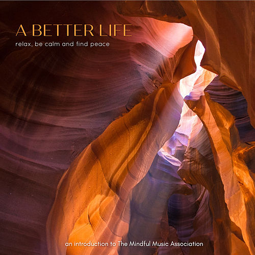 A Better Life de Various Artists