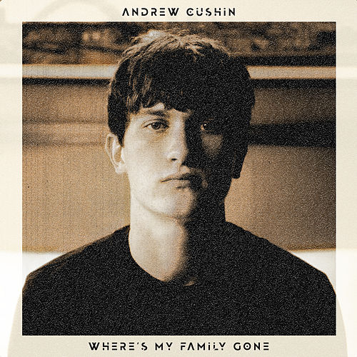 Where's My Family Gone by Andrew Cushin
