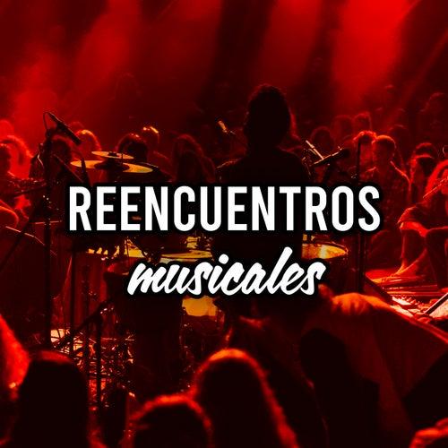 Reencuentros musicales von Various Artists