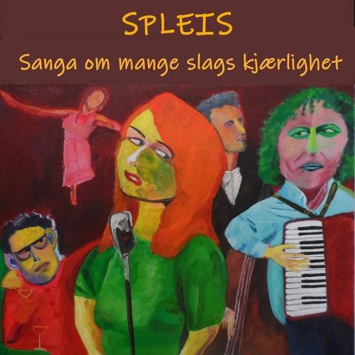Sanga om mange slags kjærlighet von Spleis