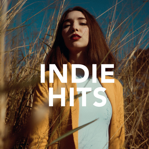 Indie Hits by Various Artists