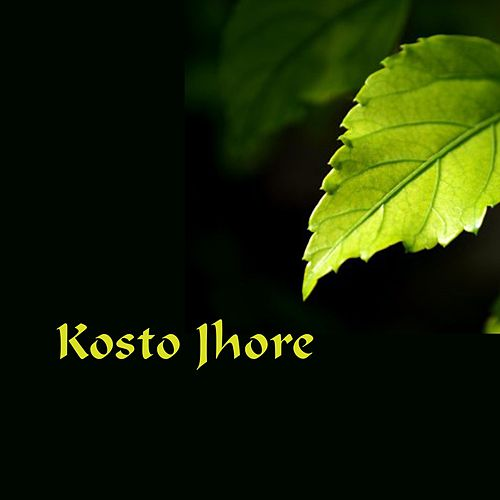 Kosto Jhore by MR Panna, Abu Hena Rony, Shathi, Shantona, Payel, Baby, Ankon