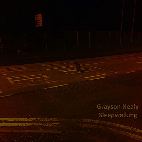 Sleepwalking by Grayson Healy
