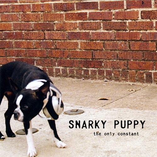 The Only Constant by Snarky Puppy