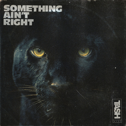 Something Ain't Right by Tash Neal