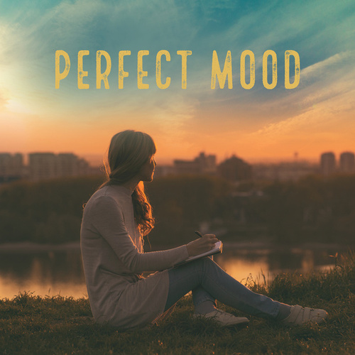Perfect Mood by Various Artists