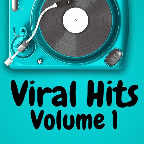 Viral Hits Volume 1 von Various Artists