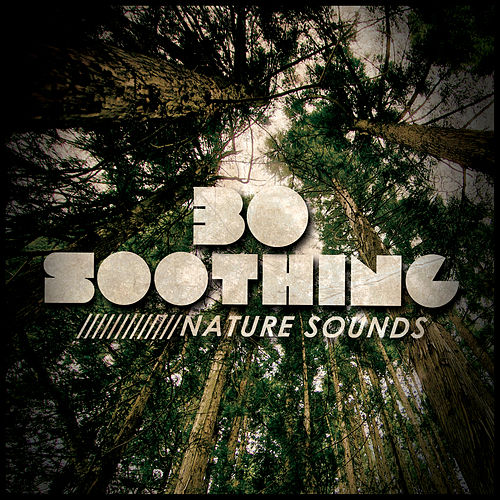 30 Soothing Nature Sounds de Nature Sound Collection