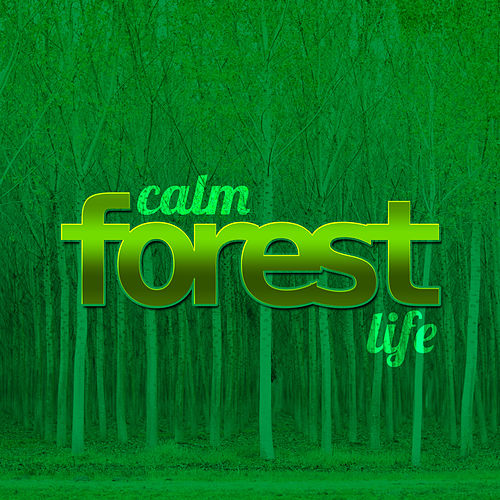 Calm Forest Life de Nature Sound Collection