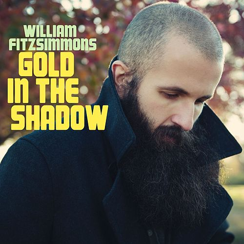 Gold in the Shadow (Deluxe Version) by William Fitzsimmons