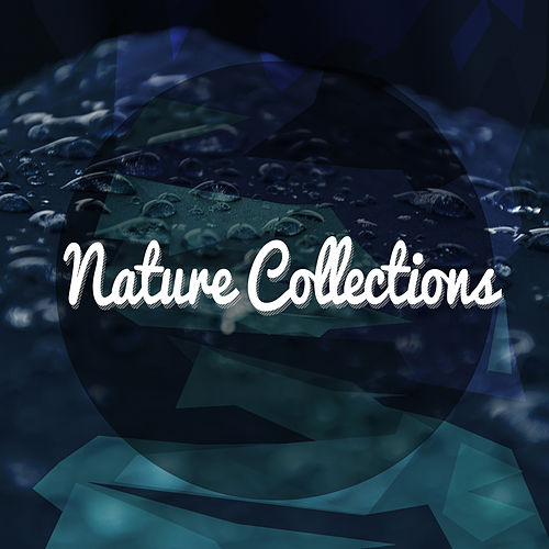 Nature Collections de Nature Sound Collection