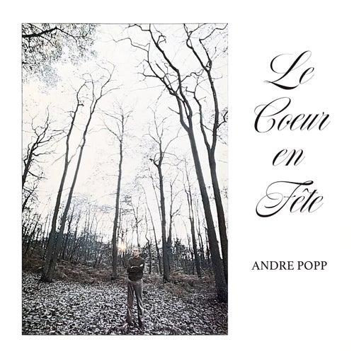 Le cœur en fête van André Popp