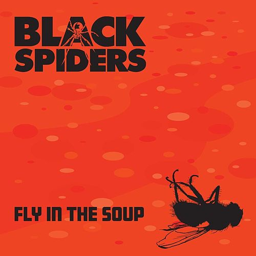 Fly in the Soup de Black Spiders