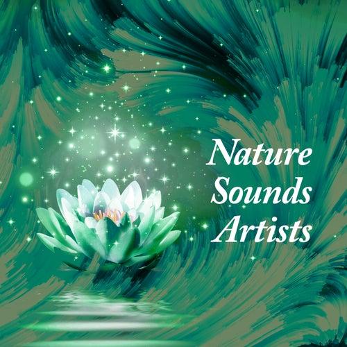 Nature Sounds Artists by Nature Sounds Artists