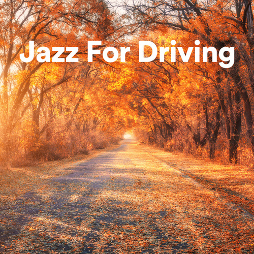 Jazz For Driving von Various Artists