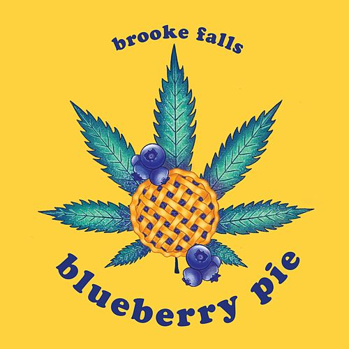 blueberry pie by Brooke Falls