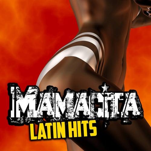 Mamacita Latin Hits by Various Artists