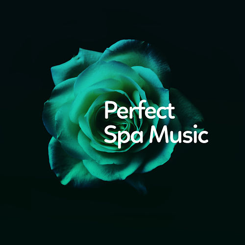 Perfect Spa Music by Relaxing Spa Music