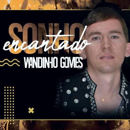 Sonho Encantado de Wandinho Gomes