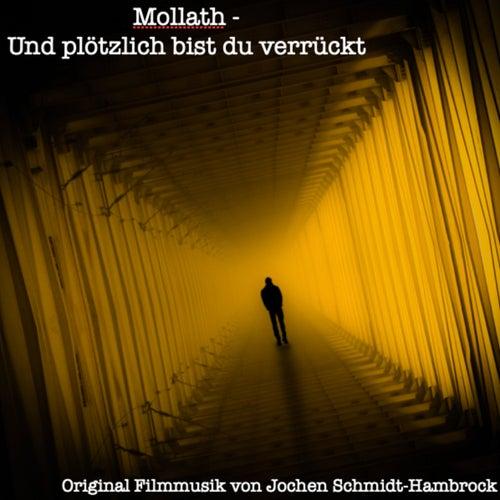 Mollath - und plötzlich bist du verrückt (Original Motion Picture Soundtrack) von Jochen Schmidt-Hambrock