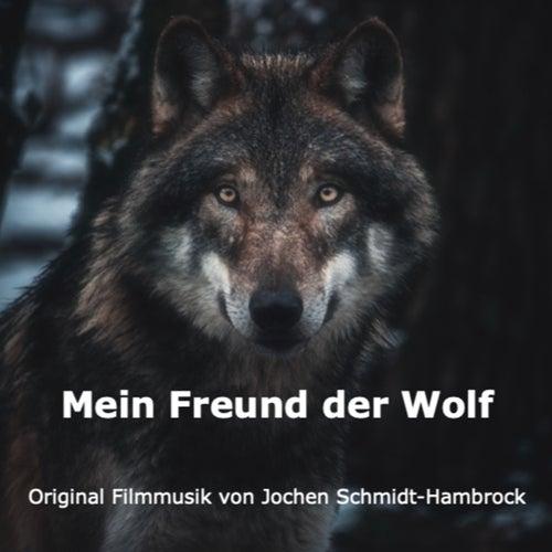 Mein Freund der Wolf (Original Motion Picture Soundtrack) von Jochen Schmidt-Hambrock