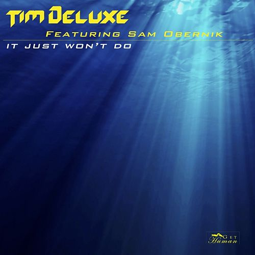 It Just Won't Do by Tim Deluxe