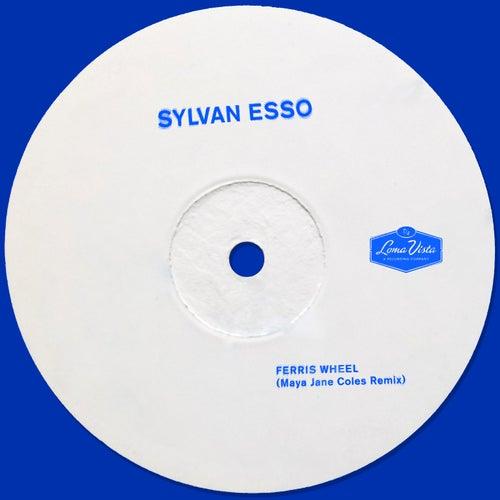 Ferris Wheel (Maya Jane Coles Remix) de Sylvan Esso
