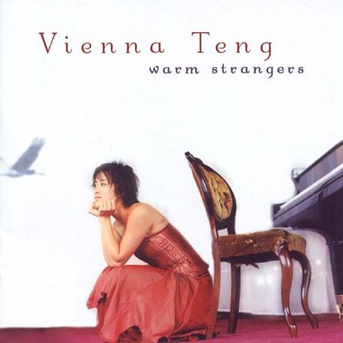 Warm Strangers by Vienna Teng