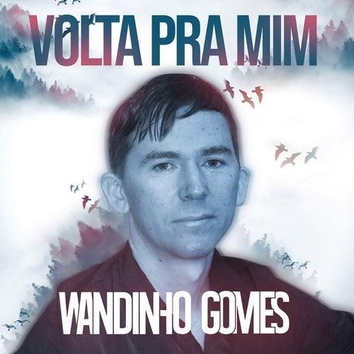 Volta Pra Mim de Wandinho Gomes