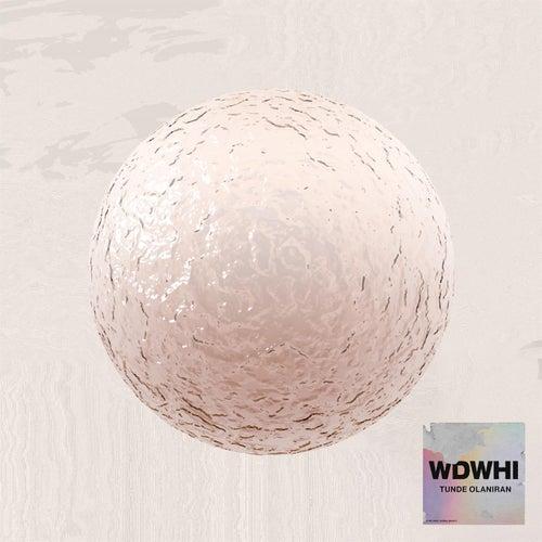 WDWHI by Tunde Olaniran