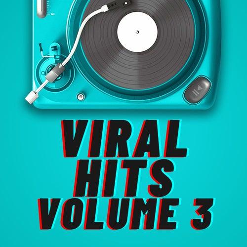 Viral Hits Volume 3 von Various Artists