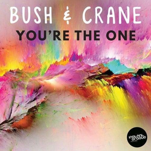 You're The One de Bush