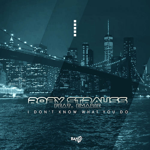 I Don't Know What You Do (feat. Emarie) by Roby Strauss