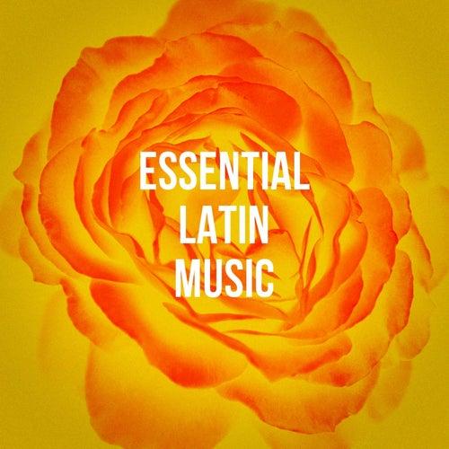 Essential Latin Music by Los Latinos Románticos, Exitos de la Musica Latina, Grupo Latino