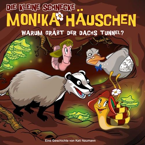 58: Warum gräbt der Dachs Tunnel? von Die kleine Schnecke Monika Häuschen