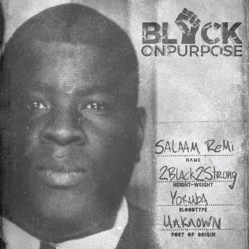 Black On Purpose von Salaam Remi