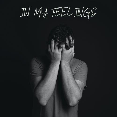 In My Feelings de Various Artists