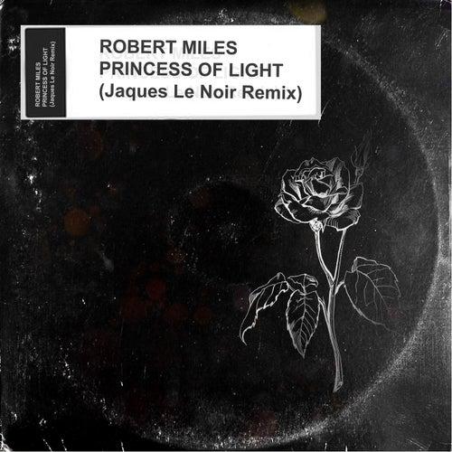 Princess Of Light (Jaques Le Noir Remix) de Robert Miles