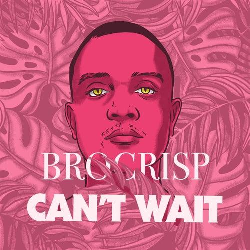 Can't Wait by Brocrisp