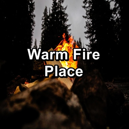 Warm Fire Place by Christmas Hits