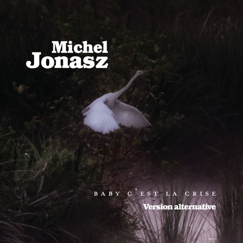 Baby c'est la crise (Version alternative) de Michel Jonasz