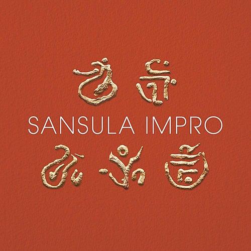 Sansula impro by Steven Vrancken