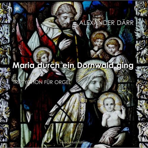 Maria durch ein Dornwald ging - Triptychon für Orgel (Instrumental) von Alexander Därr