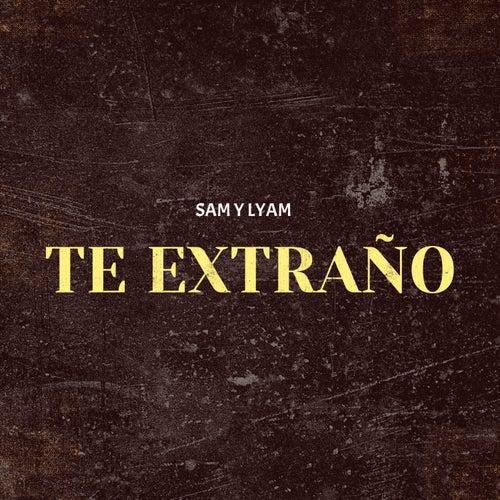 Te Extraño by Sam