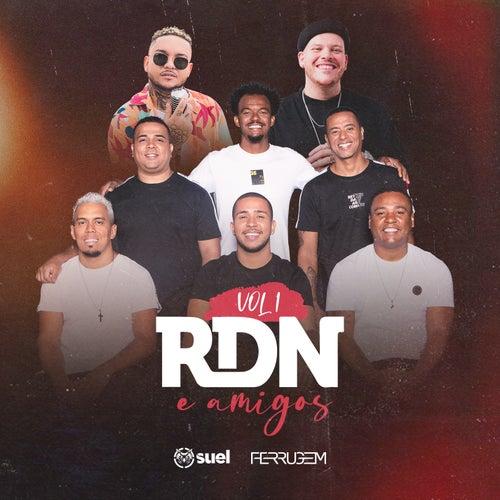 RDN & Amigos, Vol. 1 de Rdn