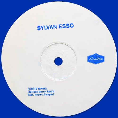 Ferris Wheel (Terrace Martin Remix) de Sylvan Esso