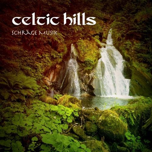 Schräge Music (feat. Jacopo Novello) by Celtic Hills
