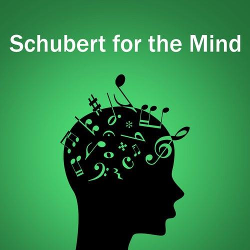 Schubert for the Mind von Franz Schubert
